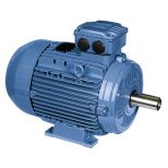 Electric motor :: WEG W21 - Aluminium Frame - High Efficiency - IE2