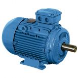 Electric motor :: WEG W21 - Aluminium Frame - Standard Efficiency - IE1