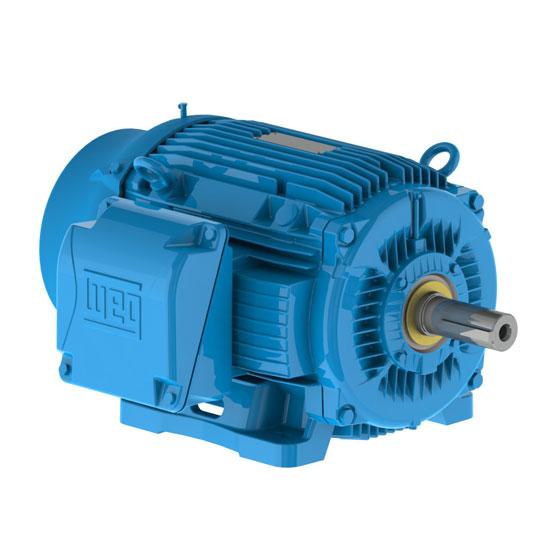 Electric Motor WEG