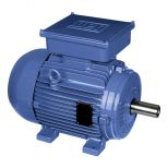 Electric motor :: WEG Single-Phase Motors - Cast Iron Frame