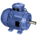 Electric motor :: WEG W21 - Cast Iron Frame - Standard Efficiency - IE1